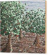 Orchard 4 Wood Print