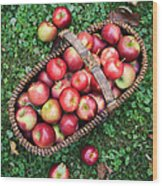 Orchard Fresh Picked Apples Wood Print