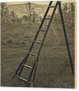Orchard Ladder Wood Print