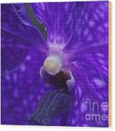 Orchid 196 Wood Print