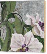 Orchid A - Phalaenopsis Wood Print