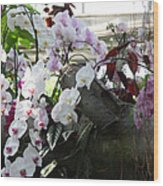 Orchid Branch Wood Print