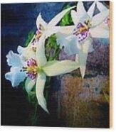Orchid Cascade Wood Print