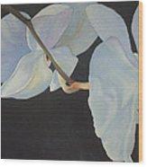 Orchid Dance II Wood Print