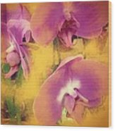 Orchid Dream Wood Print