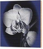 Orchid Elegance 2 Wood Print