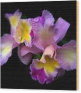 Orchid Embrace Wood Print