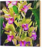 Orchid Flower Bunch Wood Print