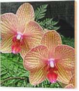 Orchid Pair Wood Print