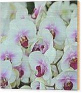 Orchid Sea Wood Print