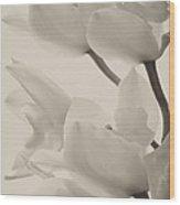 Orchid Sepia Wood Print