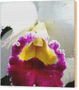 Orchid Series 2 Wood Print
