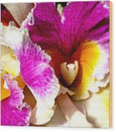 Orchid Series 6 Wood Print