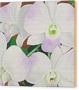 Orchid Splendor Painting Wood Print