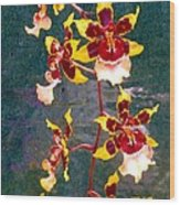 Orchid Spray By Pottery  Wood Print