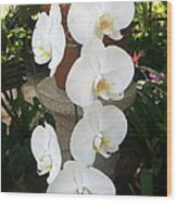 Orchid Tower Wood Print