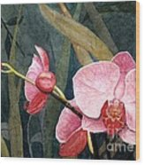 Orchid Trio Wood Print
