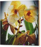 Orchid Vignette Wood Print
