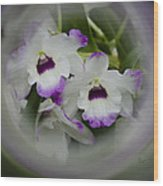 Orchid Wine Swirl Wood Print
