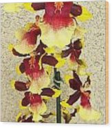 Orchids 18 Wood Print