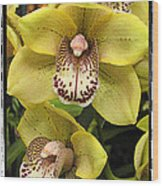 Orchids  9 Wood Print