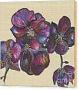 Orchids Cream Wood Print