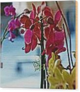Orchids In A Window Wood Print