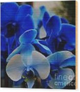 Orchids In Blue  Wood Print