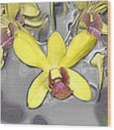 Orchids With Oil Slick Pattern Wood Print