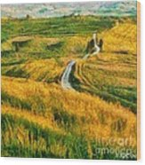 Orcia Valley Wood Print