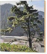 Oregon - Heceta  Wood Print