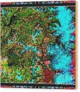 Oregon Cascades Nasa Satellite Wood Print
