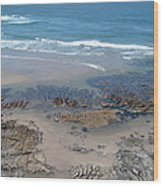 Oregon Coast Beauty Wood Print