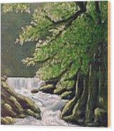 Oregon Creek Wood Print