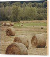 Oregon Hay Bales Wood Print by Carol Leigh
