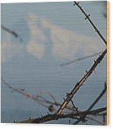 Oregon Nature Frames Mountain Wood Print