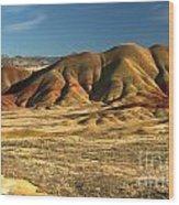 Oregon Painted Landscape Wood Print