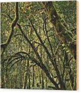 Oregon Rainforest Green Wood Print