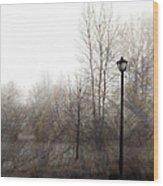 Oregon Winter Wood Print by Carol Leigh