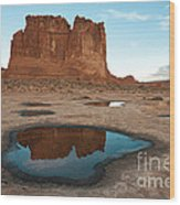 Organ Formation, Arches National Park Wood Print