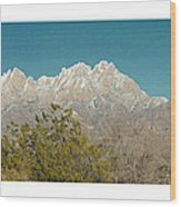 Organ Mountain Wilderness Wood Print
