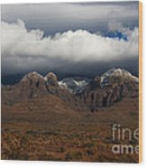 Organ Mountains New Mexico Wood Print