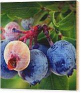 Organic Blues Wood Print