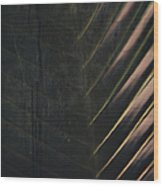 Organic Palm Wood Print