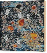 Oriental Moonlight Wood Print by Carolyn Doe
