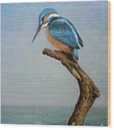 Original Animal Oil Painting Bird  Art Kingfisher On Canvas#16-2-6-15 Wood Print