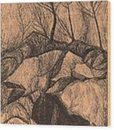 Original Looking Up Wood Print