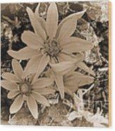 Monochrome Classic Wood Print