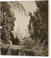 Original Vintage Urban Landscape Deco Reproduction Downtown Los Angeles Trees Retro Unique Fine Art Wood Print