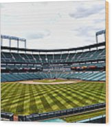 Oriole Park At Camden Yards Wood Print